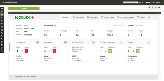 monitorizacion nginx nginx plus status
