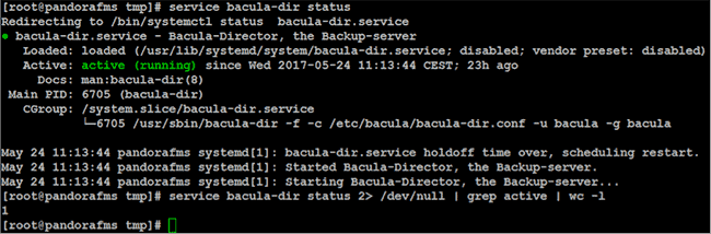 monitorizacion bacula