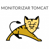 monitorizar Tomcat