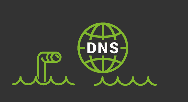Monitorización DNS