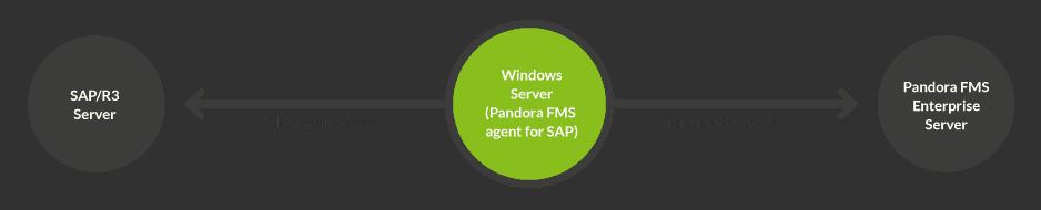 SAP esquema 1 - Monitorización SAP