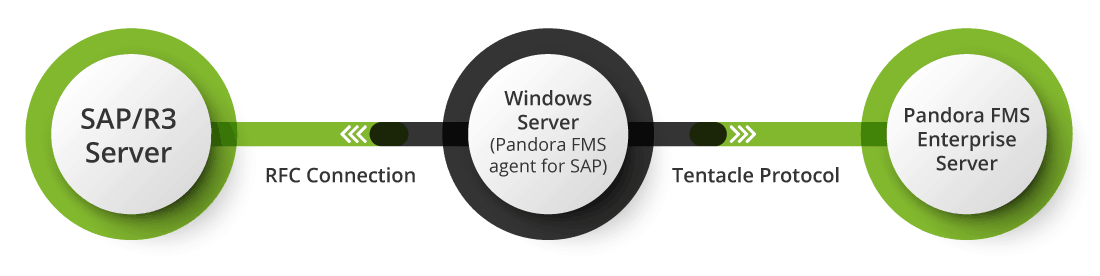 monitorizacion sap pandora esquema instalacion no intrusiva - Surveillance SAP
