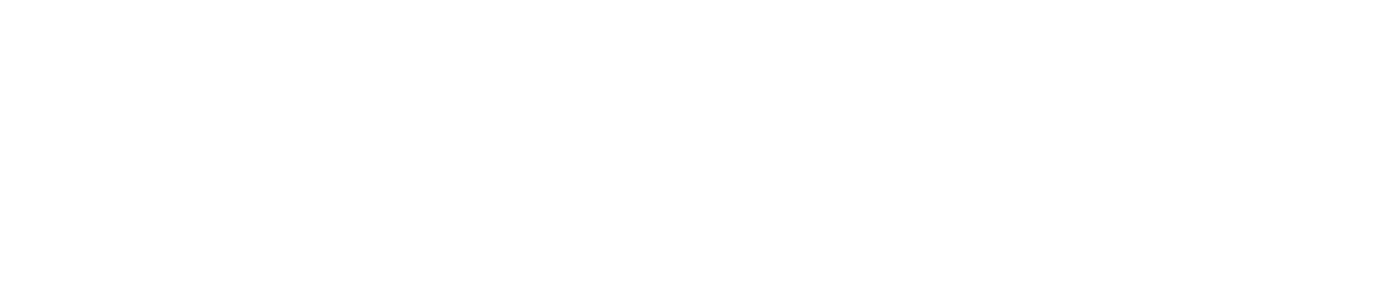 logo certificado por SAP oficial